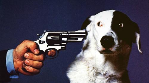 https://beerwhiskeyandbrotherhood.files.wordpress.com/2011/06/dog-gun.jpg
